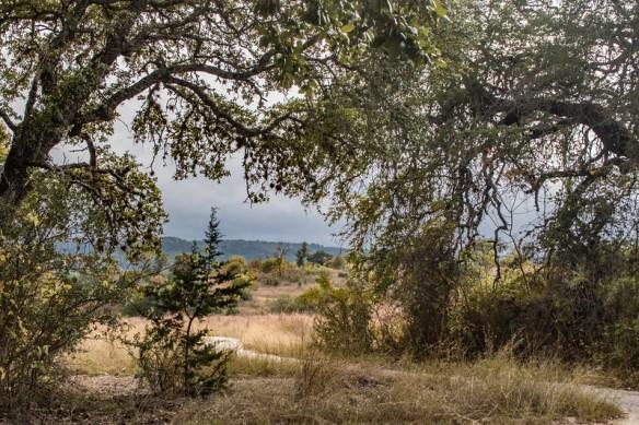 Doeskin Ranch - Balcones Canyonlands NWR
